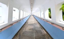 映画のロケ地にもなった「インスタ映え」橋で写真を撮りまくってきた。